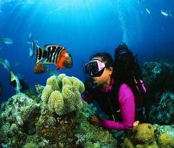 Adventure - Travel - Anupriya Mishra