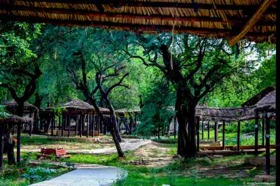 Surajkund Village - anupriyamishra.com - blog