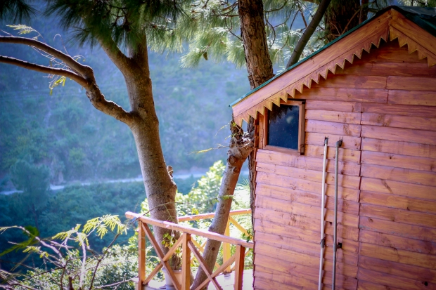 Pinewood Cottages-Travel-Anupriya Mishra